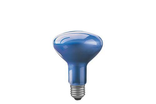 Какие лампы нужны для рассады - обзор, характеристики, правила выбора!