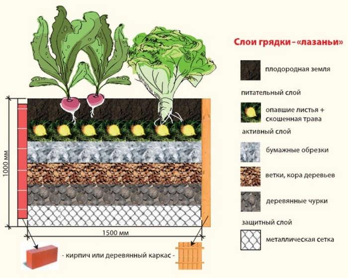 Как сделать тёплые грядки на огороде